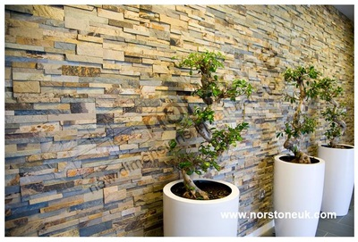 Ochre Stone Cladding Feature Wall
